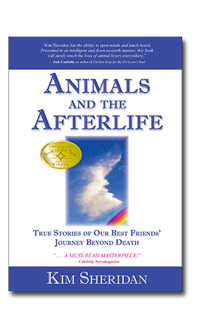 Animals and the Aferlife